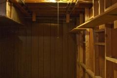 20090825-Basement-7_before_bath