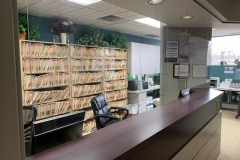 Commericial Office Projects